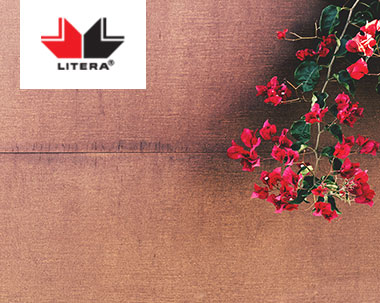 Editura Litera logo with flowers