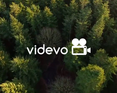 Videvo website