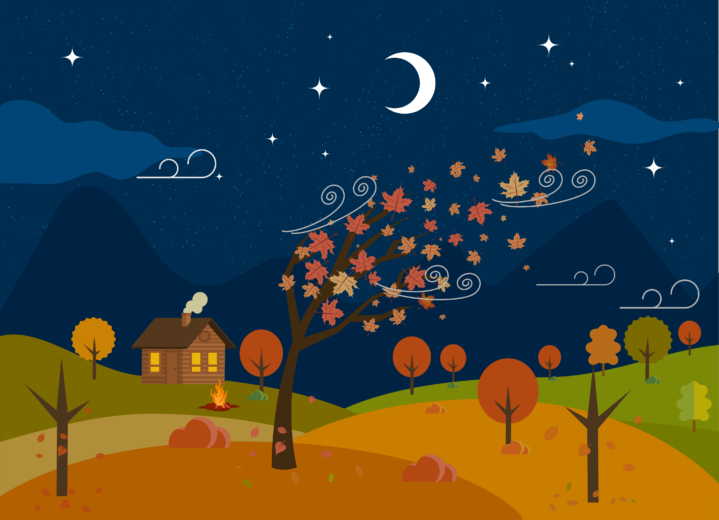 Autumn at night illustration