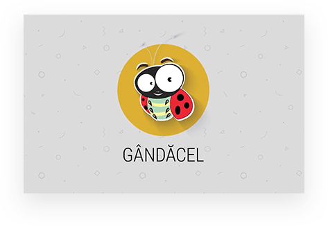gandacel-internal-management-app