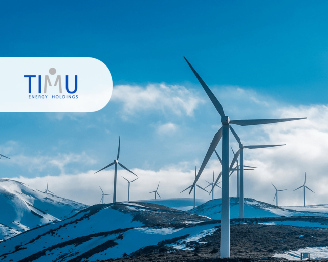 TIMU website design