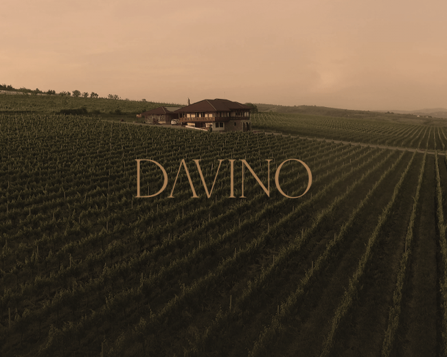 Davino - premium website for Romanian wine producer